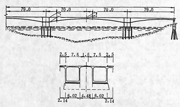 图2-1-77塞特波桥双壁柔性墩构造 尺寸单位:m